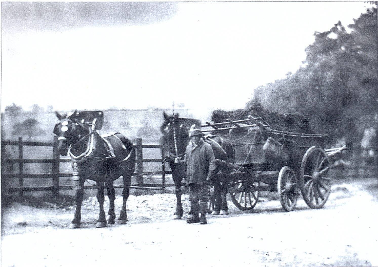 Horse and cart at Bullbaiter