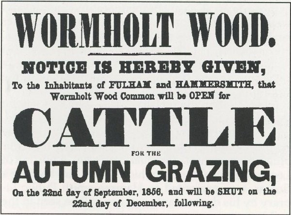 Wormholt Wood notice